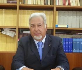 Avv. Prof. Giorgio Vecchione